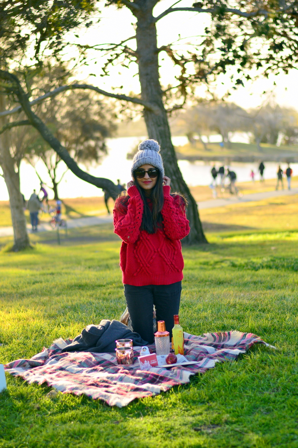 valentines-day-picnic-park-winter-outfit-style-blogger-moscow-mules-subscription-service 7