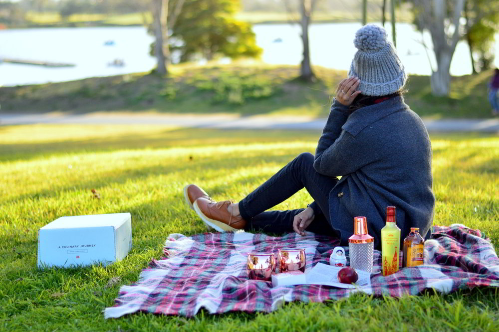 valentines-day-picnic-park-winter-outfit-style-blogger-moscow-mules-subscription-box 10