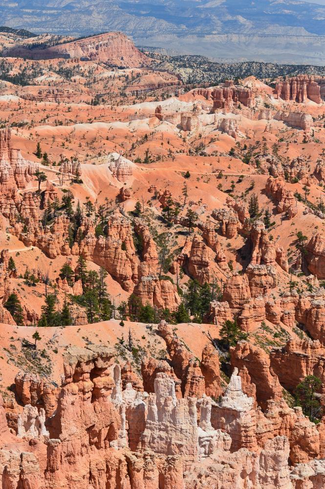 bryce-canyon-utah-national-park-usa-travel-blogger 4
