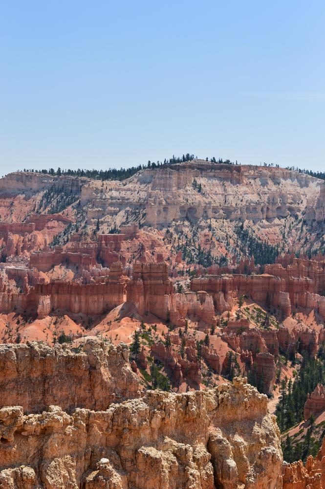 pink-crop-top-shorts-set-bryce-canyon-utah-travel-blogger-usa 5