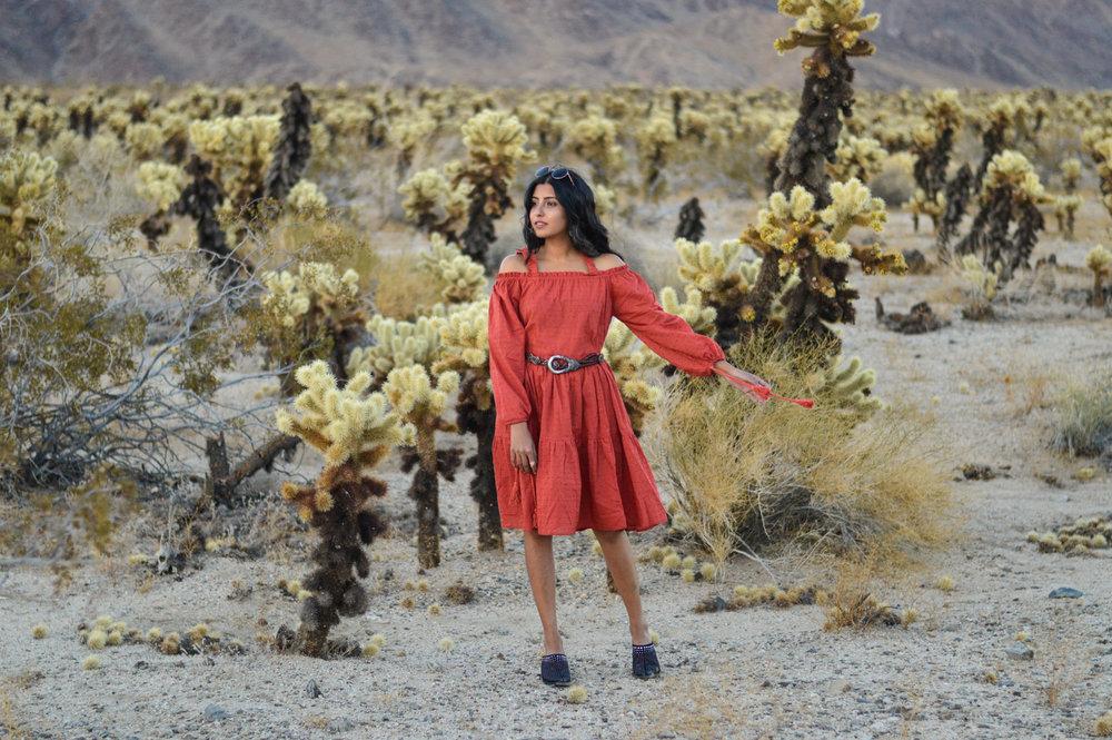 cholla-cactus-garden-joshua-tree-travel-itinerary-fashion-blogger-boho-style 1