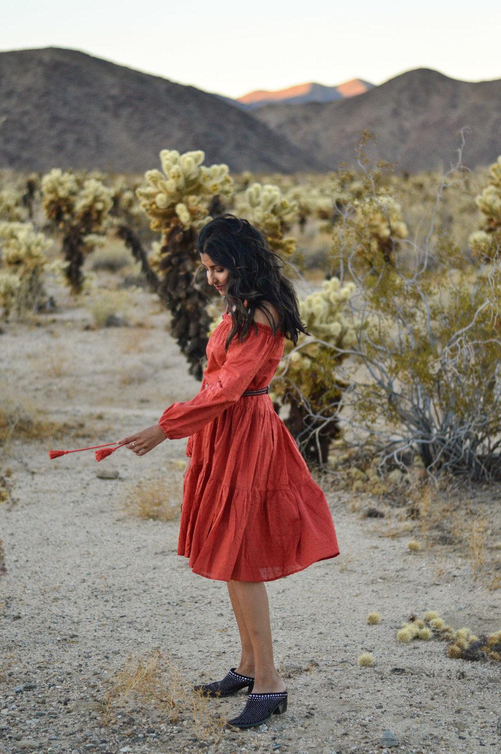 cholla-cactus-garden-joshua-tree-tassels-dress-fashion-blogger-boho-chic 3