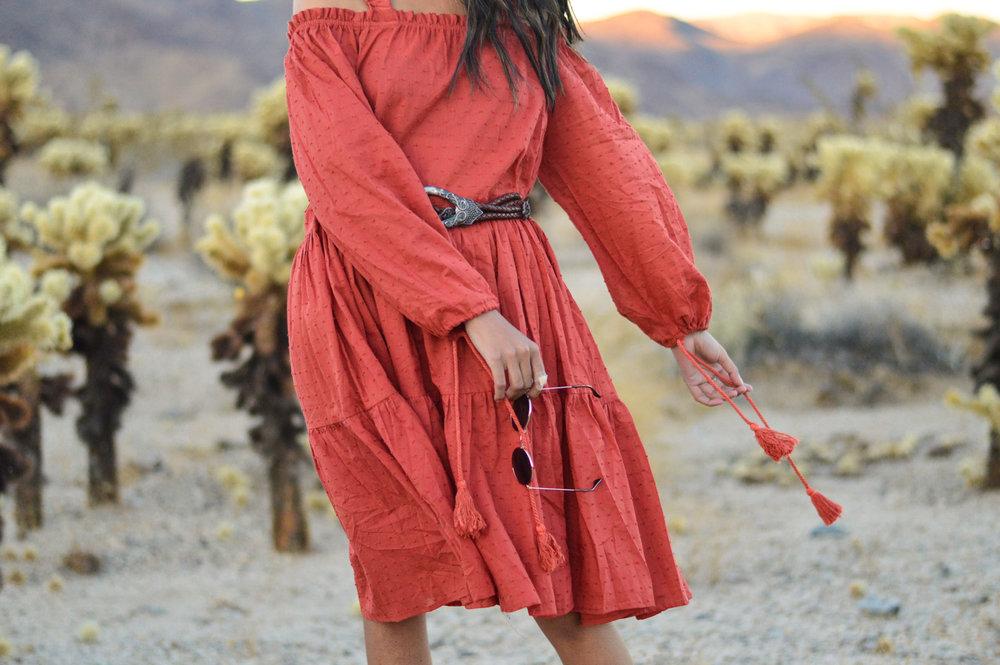 cholla-cactus-garden-joshua-tree-travel-itinerary-fashion-blogger-boho-dress-fall 7