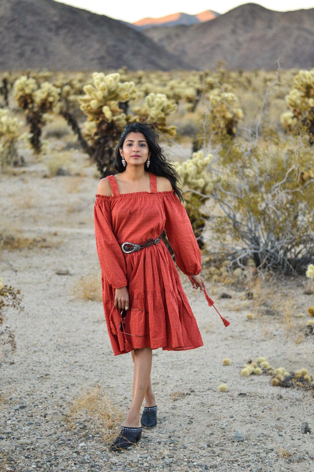 cholla-cactus-garden-joshua-tree-travel-itinerary-fashion-blogger-boho-style 8
