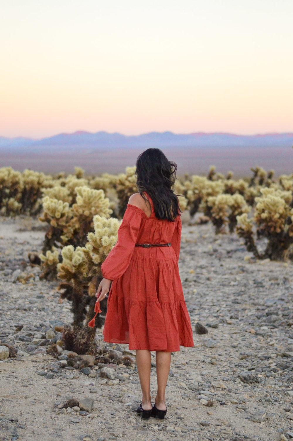 cholla-cactus-garden-joshua-tree-travel-itinerary-fashion-blogger-boho-style 9