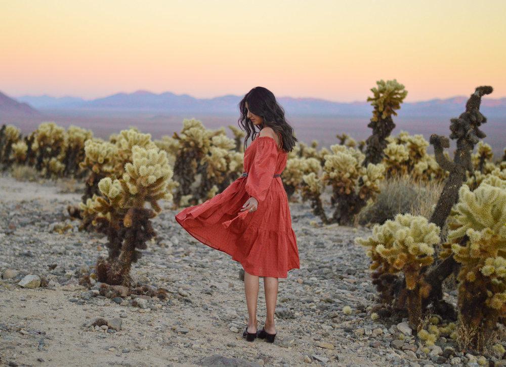 cholla-cactus-garden-joshua-tree-travel-itinerary-fashion-blogger-boho-style-sunset 11