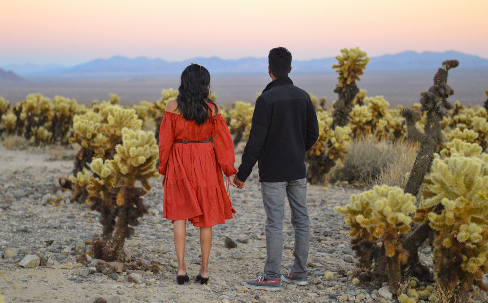 cholla-cactus-garden-joshua-tree-travel-itinerary-fashion-blogger-boho-style 13