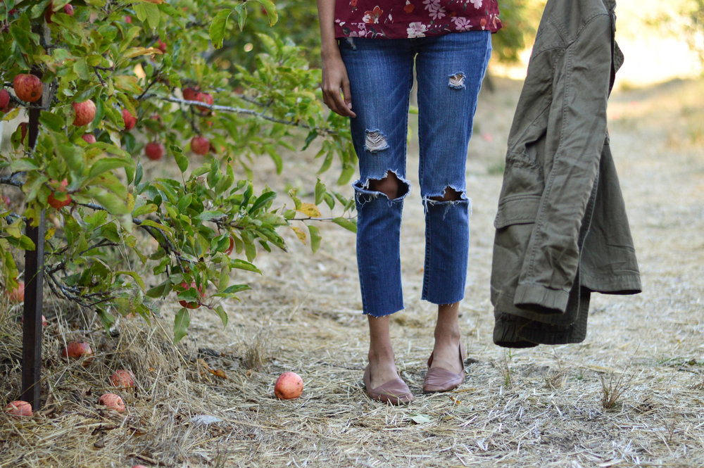 apple-picking-fall-loafers-utility-jacket-california-fashion-blogger 10