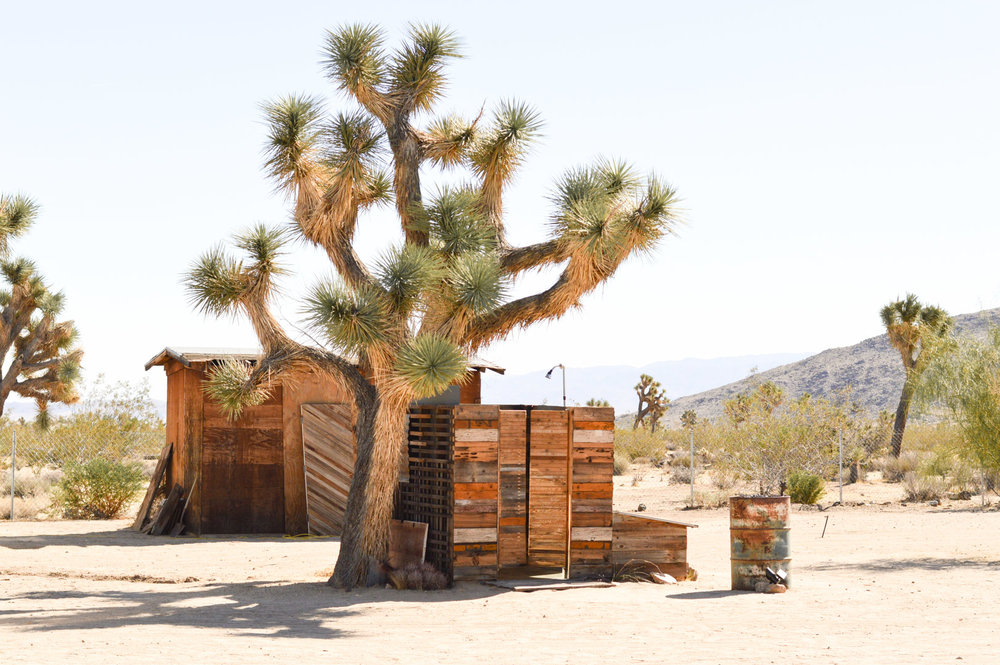 joshua-tree-national-park-california-travel-airbnb-where-to-stay 9
