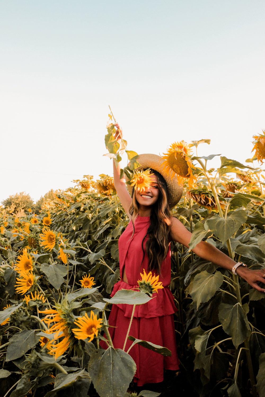 sunflower-fields-dixon-california-blogger-outfit 3