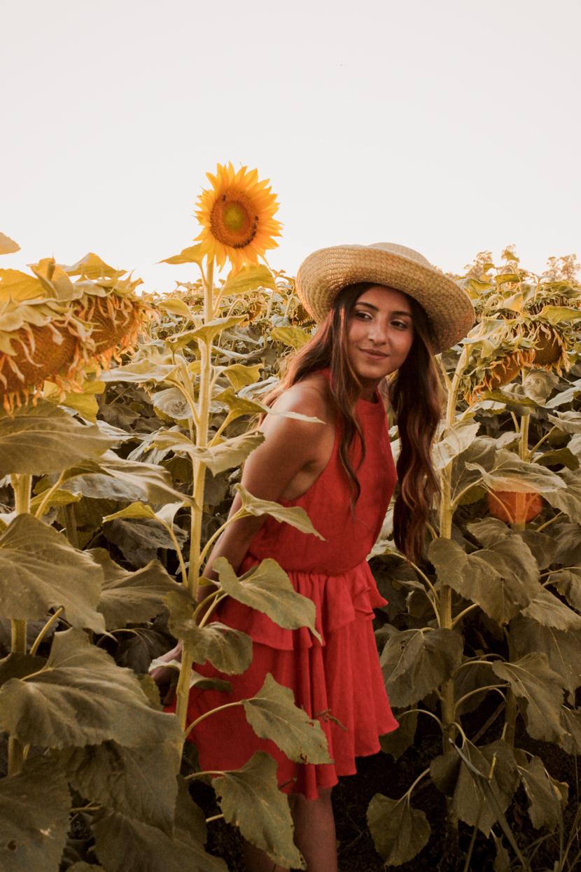 sunflower-fields-dixon-california-blogger-style 8