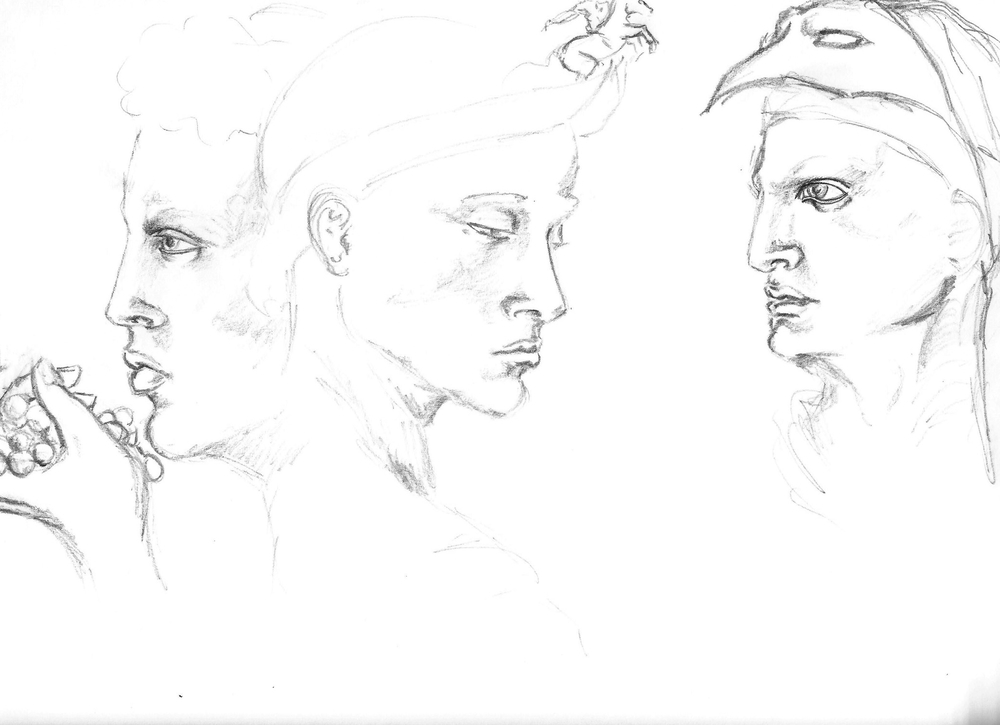 Da Vinci Studies.jpg