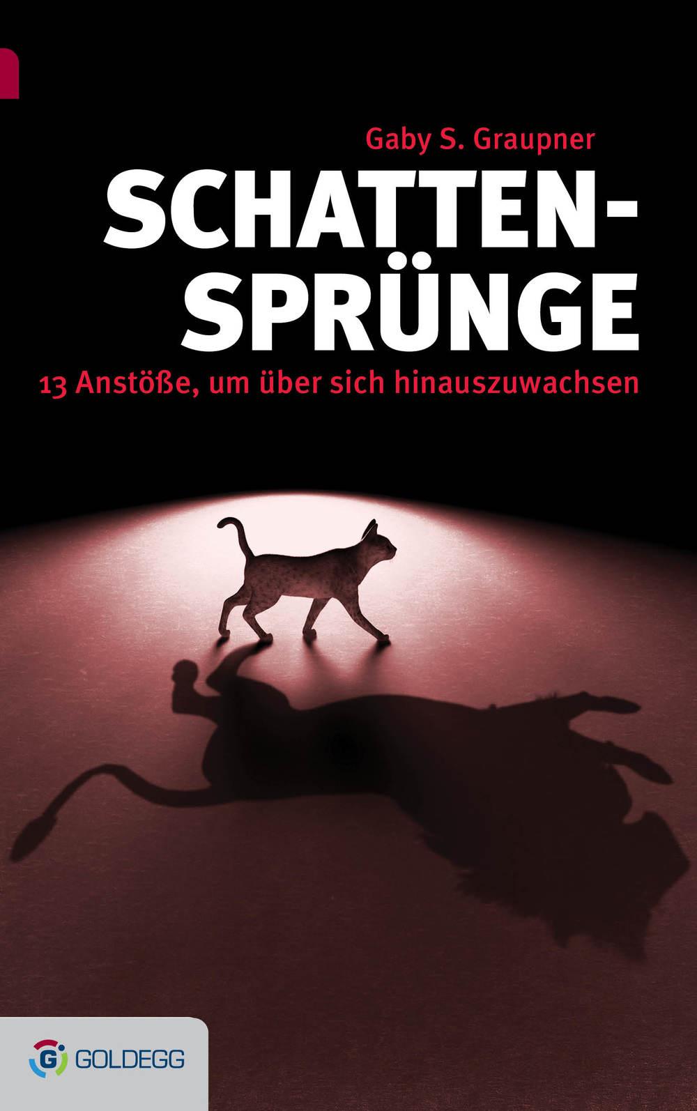 """Cover Buch """"Schattensprünge"""""""