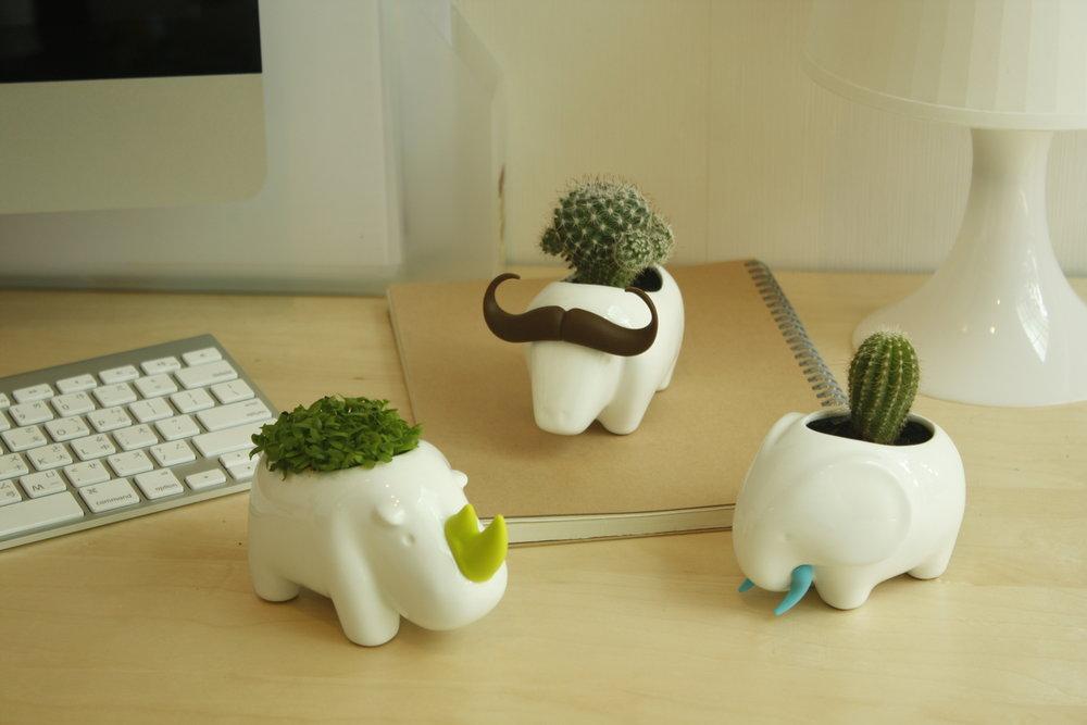 Animal Love Mini Plant Pot