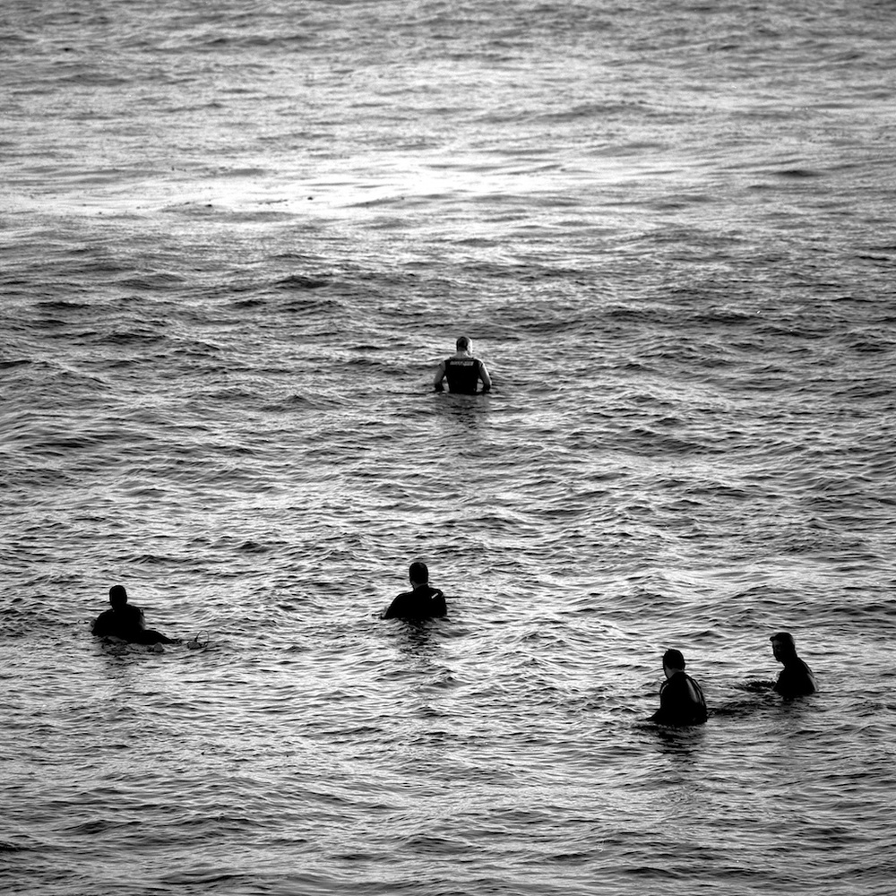 [#034811] The head of the pack, Santa Cruz, USA, 2013