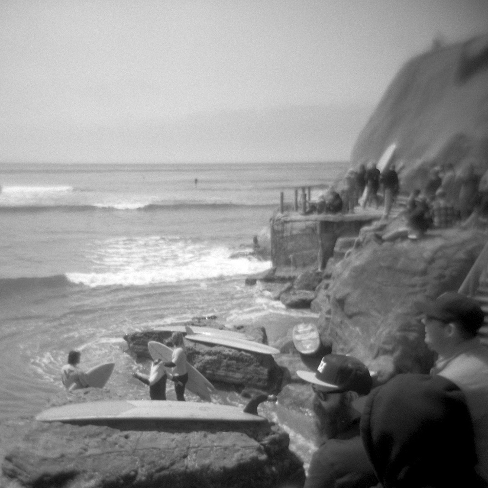 [#037410] The Peanut Gallery, Study 1, Santa Cruz, USA, 2013