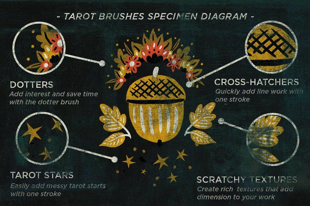 tarotbrushes_diagram-.jpg