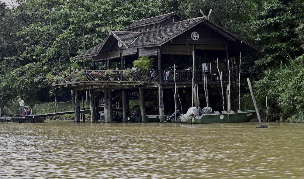 Borneo River.