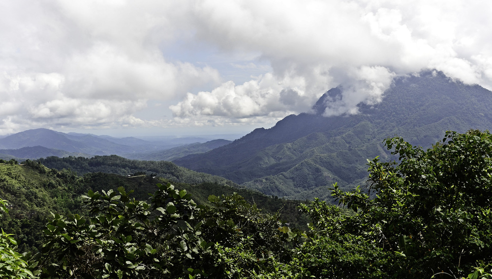 Borneo Mountains.