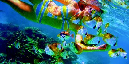 rbr-underwater0065.jpg.420x210_default.jpg