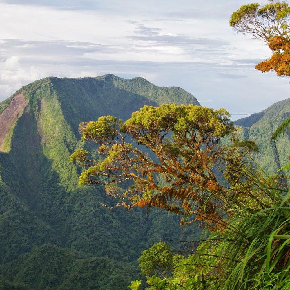 Kolombungara Island -