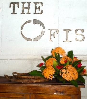 The Ofis -