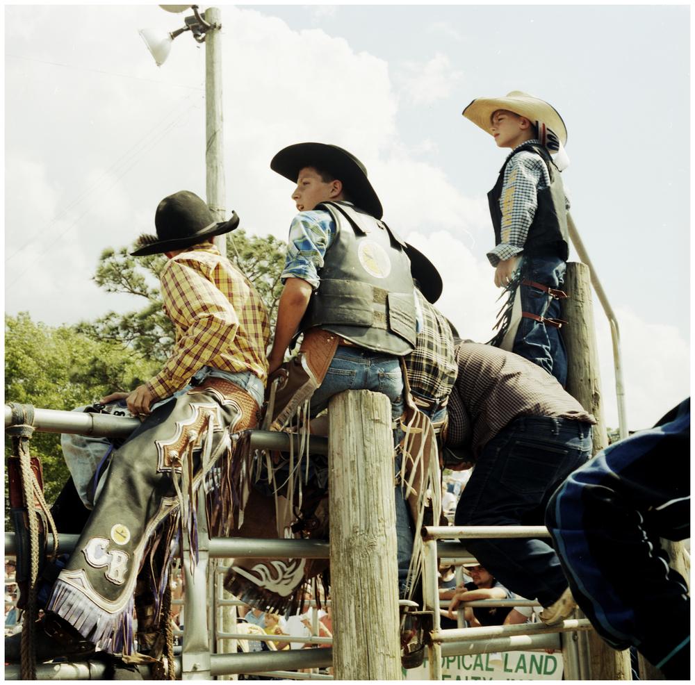 rode0o5.jpg