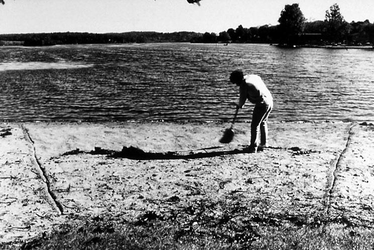 Beach Sweep #3