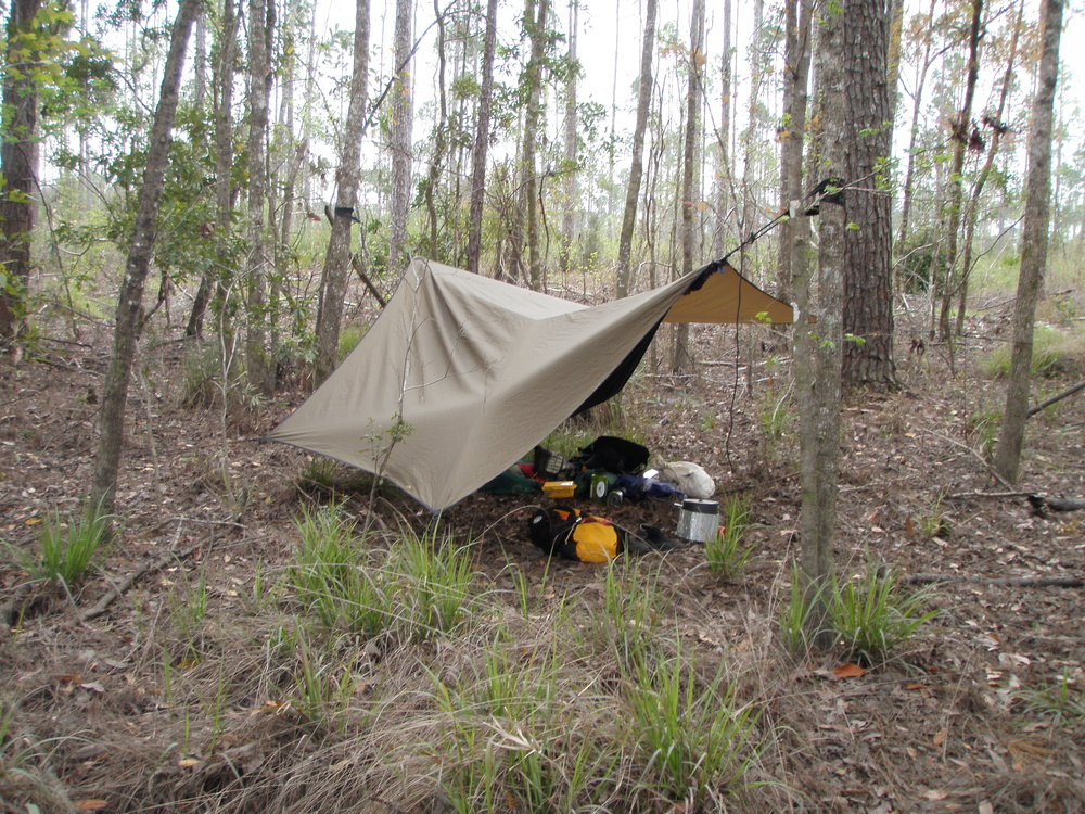 Local Wilderness Camping.JPG