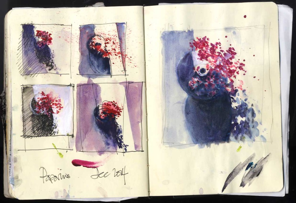 Red Berries - watercolour and pen studies