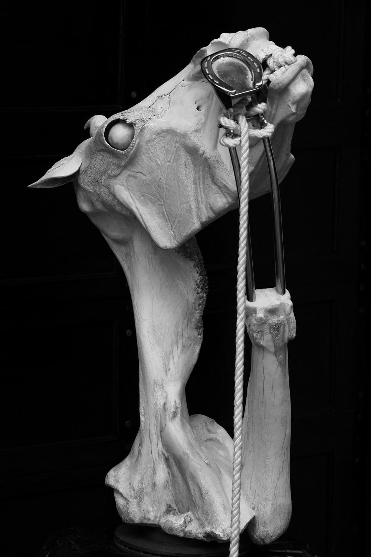 Veteran (Horse) - Bone Sculpture by Jerry Hardin