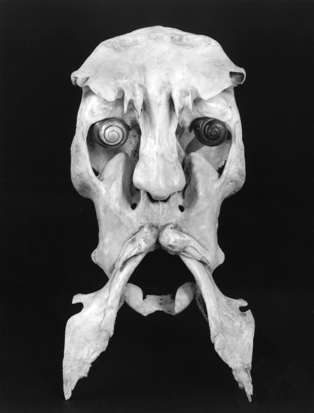 Prospero II - Bone Sculpture by Jerry Hardin