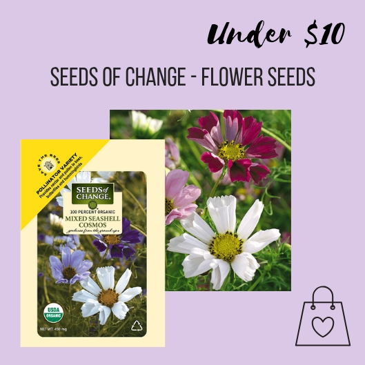 Make the world a more beautiful place by giving Seeds of Change flower seeds. These Cosmo seeds will grow into flowers that will be food for bees, butterflies, & hummingbirds, so it's a gift for them too.