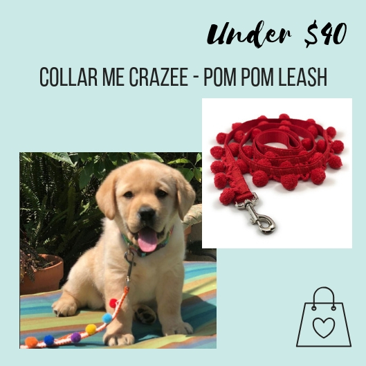 Janet, the owner of Collar Me Crazee, creates fun yet functional dog accessories. Her collection of collars, leashes, and bandanas are handmade in LA & Austin. This pom pom leash is on my list for my baby Marzen.