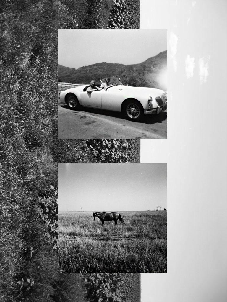 horse car.jpg