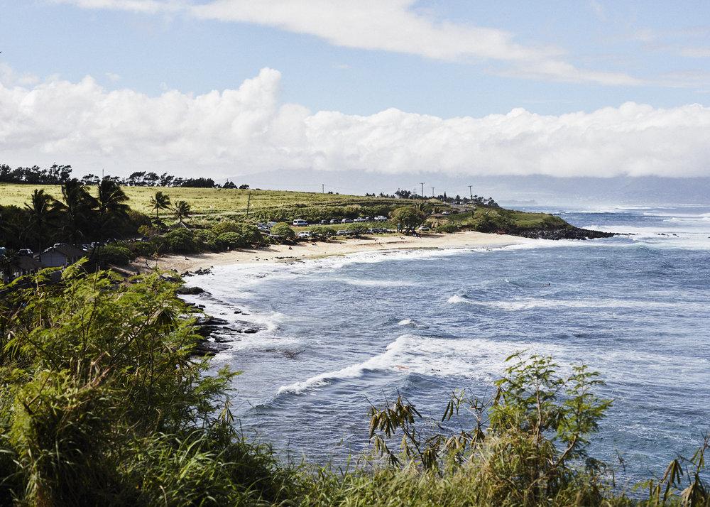190107_Maui_True_0259.jpg