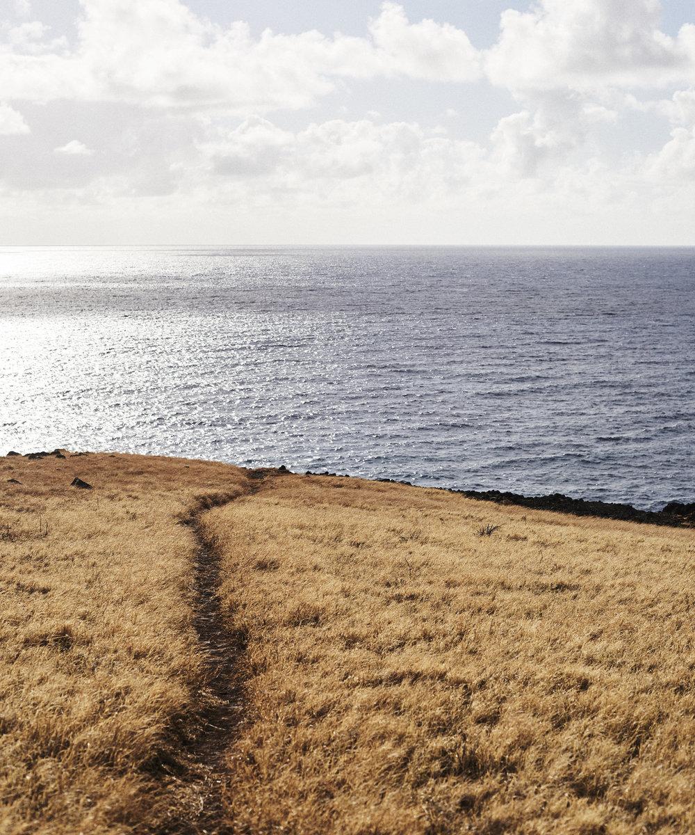 190107_Maui_True_0311.jpg