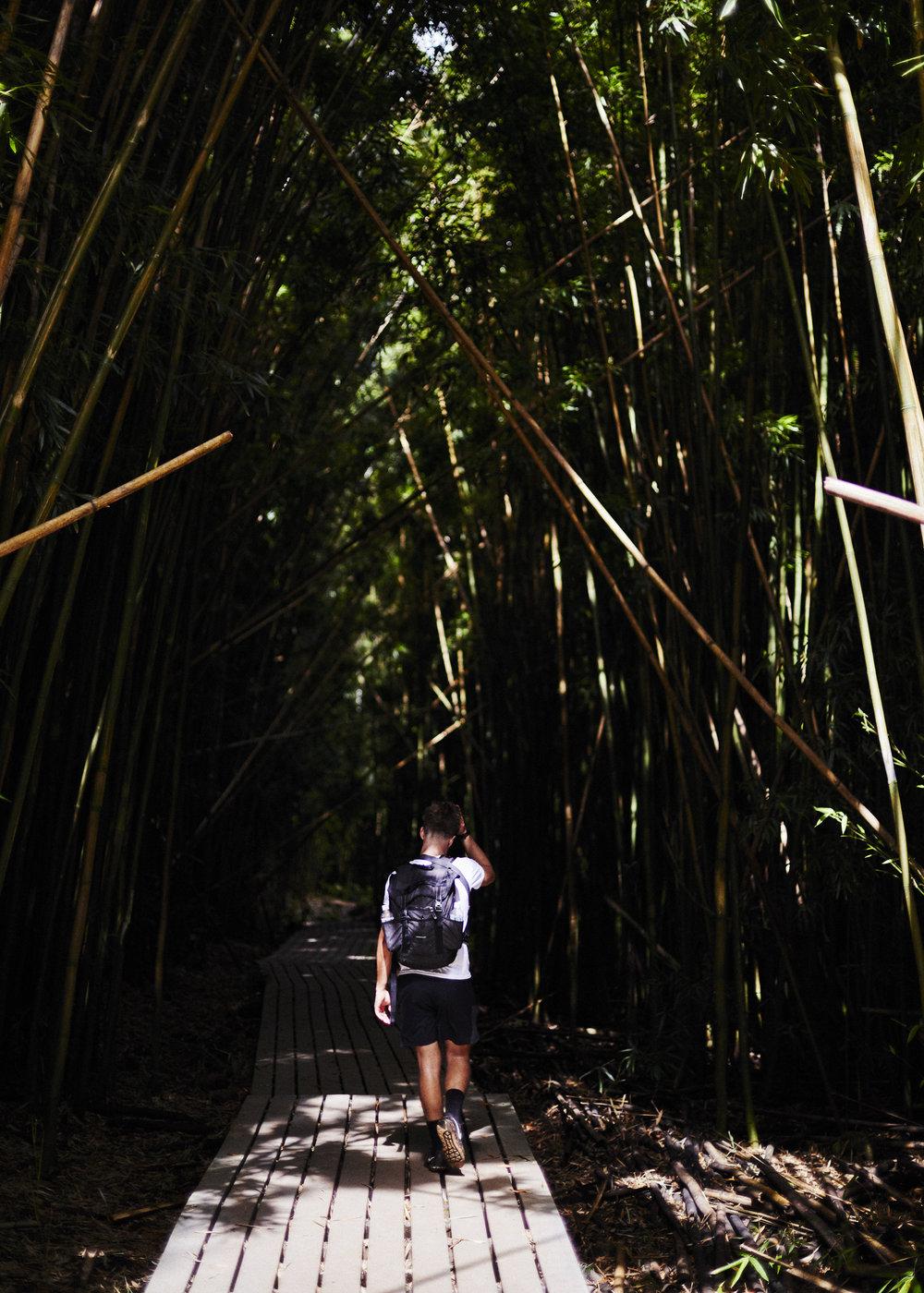 190107_Maui_True_0590.jpg