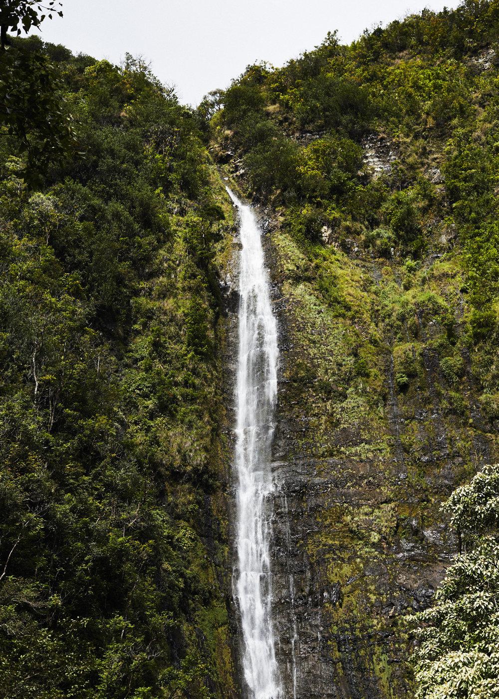190107_Maui_True_0618.jpg