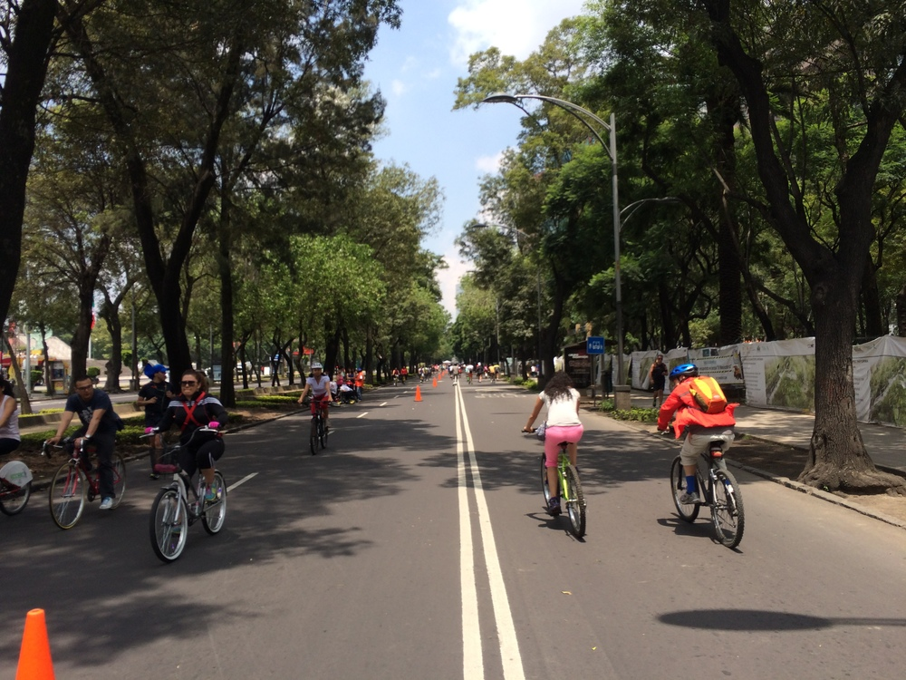 Sunday Fitness in Mexico City