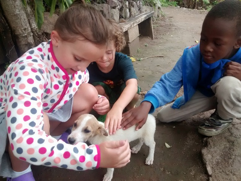 We also found a litter of puppies along the path. The kids loved petting as many as they could.