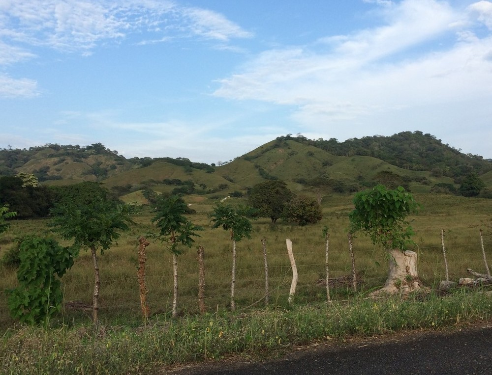 Roadside scenery in panama on the way to Venao Cove