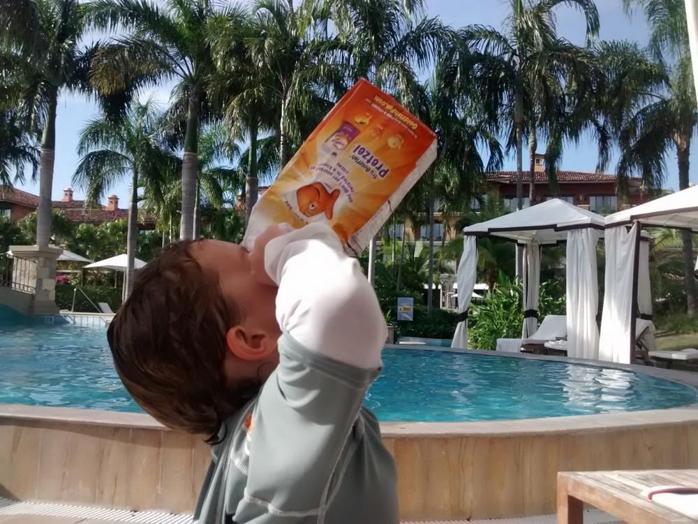 Another perk in Panama....Goldfish poolside.