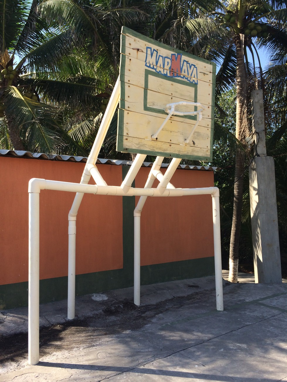 Basketball hoop and poles (PVC).