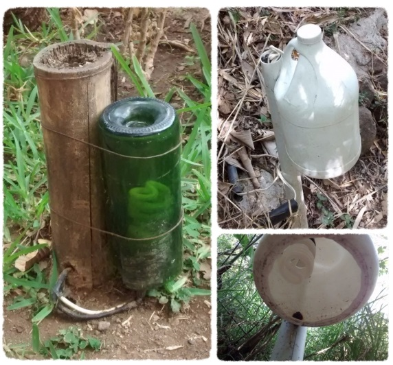 Some buried bamboo, and an empty wine bottle or a PVC pipe with an empty, cutout bleach bottle make for easy options.