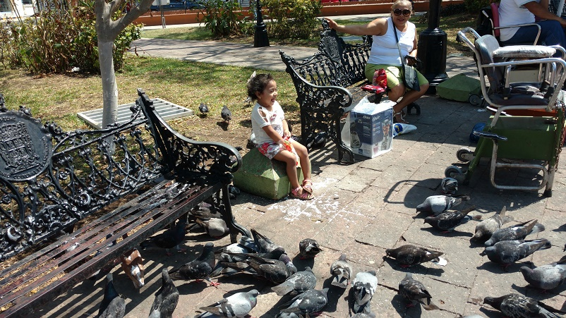 This little girl was happily feeding rice to the pigeons. There were at least 200 in her surrounding vicinity. That is until Tag and two other boys tried to run them off (and did...several times).