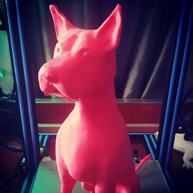 #3Dprinted our #Dog Mad Martigan 1.5 #feet #TALL - #3Dmodeling by @indiemutt #PINK #filament thanks to @makeshaper #future #projects #WIP #Puppies #3Dprinting #mutts #muttsofinstagram #3Dprinter CR-10 #doggy