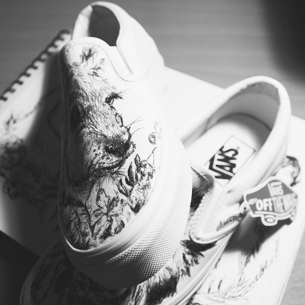 hand-drawn sneakers aka qustom quinns