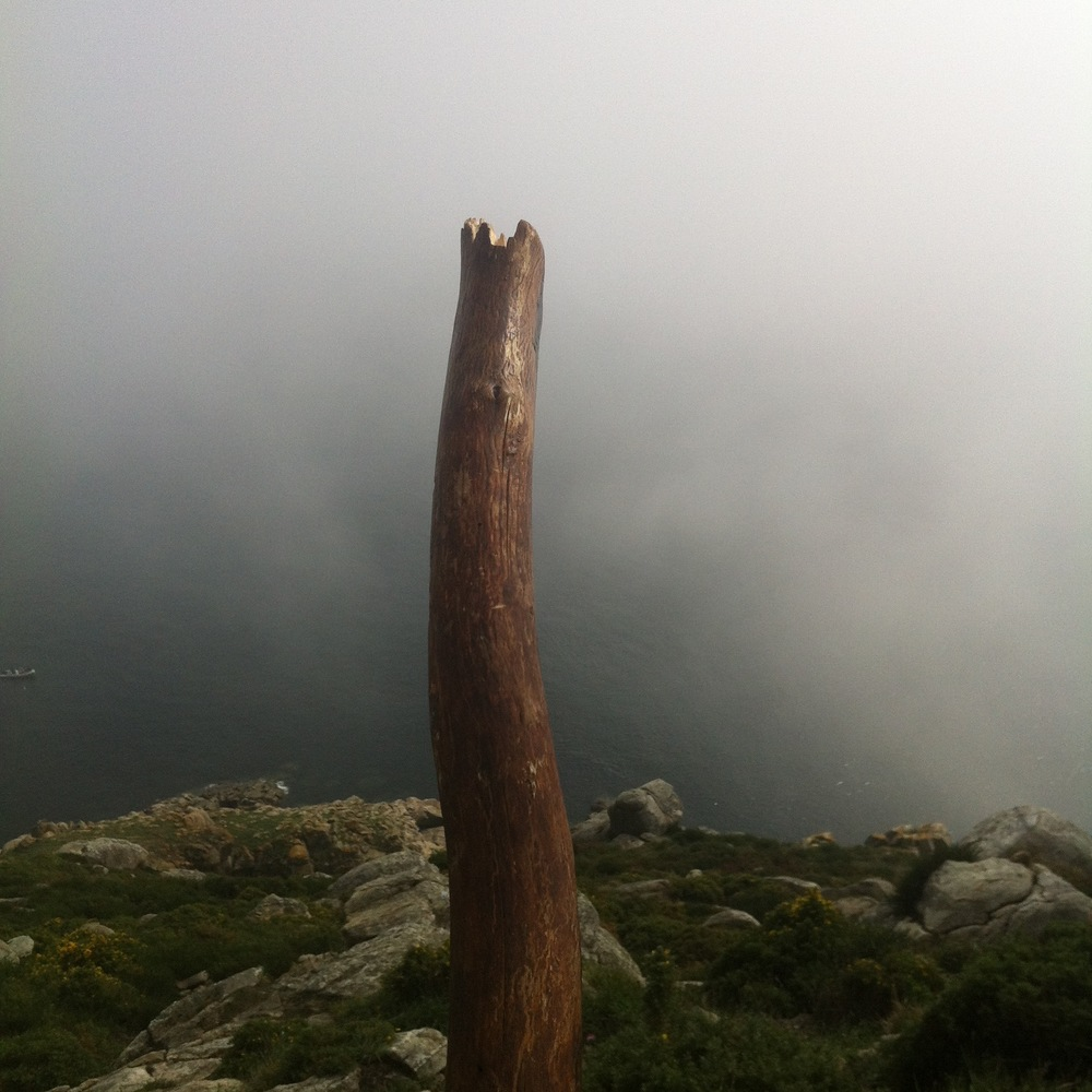 My walking stick on The Camino de Santiago.