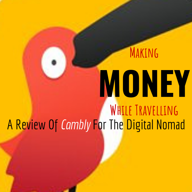 Making Money While Travelling: A Review Of
